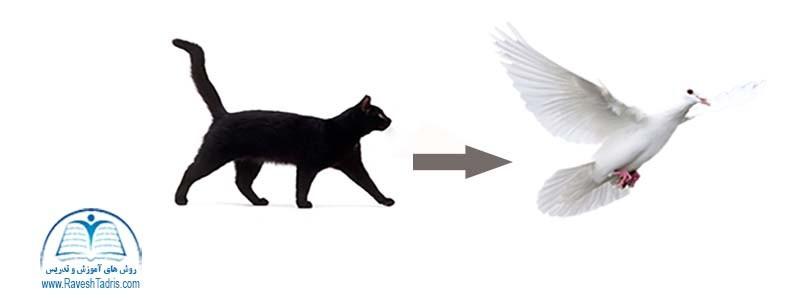 گربه را دم حجله نکشید,روز اول تدریس